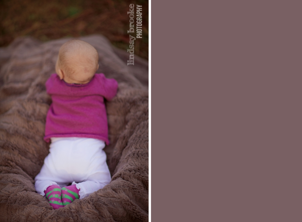 Lindsay Brooke Photography Baby in Charlotttesville at Saunders Monticello Trail